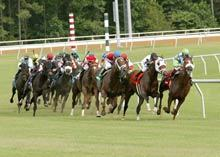 Colonial Downs Horse Racing - Martinsville, Virginia
